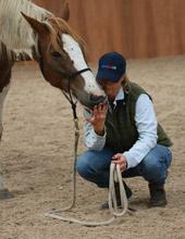 Emma Hutchison - Horseback UK